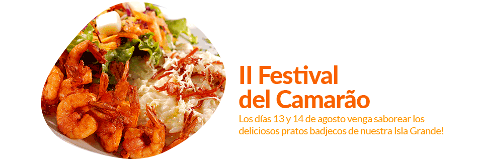 02-slide-festival-do-camarao-2016-ilha-grande-es